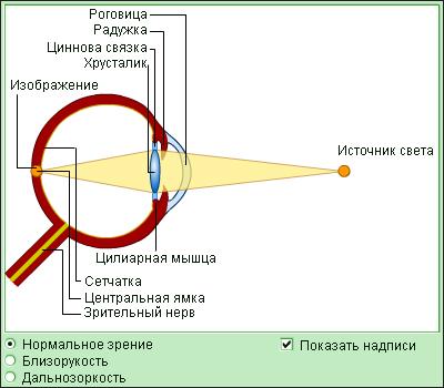 Клиника по восстановлению зрения калуга